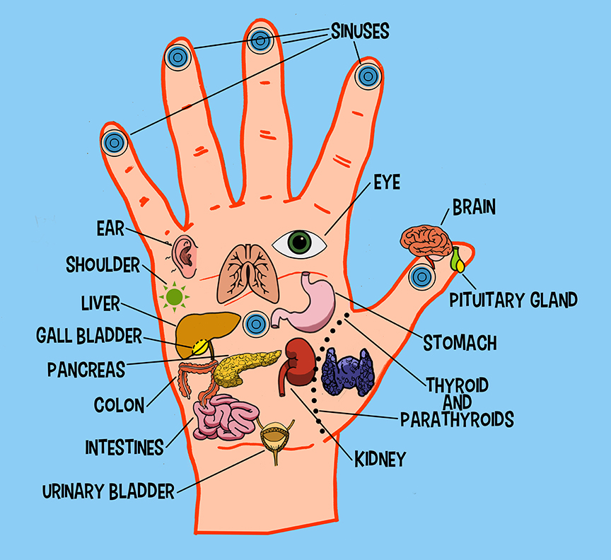 Acupressure Points For Heart Pictures to Pin on Pinterest ...